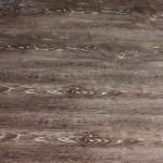 207 Dynasty Oak