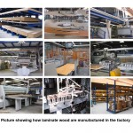 Manufacturing_process for Laminate Wood Floor products